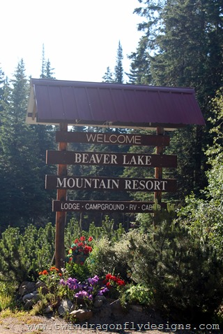 Beaver Lake Resort Campground Review